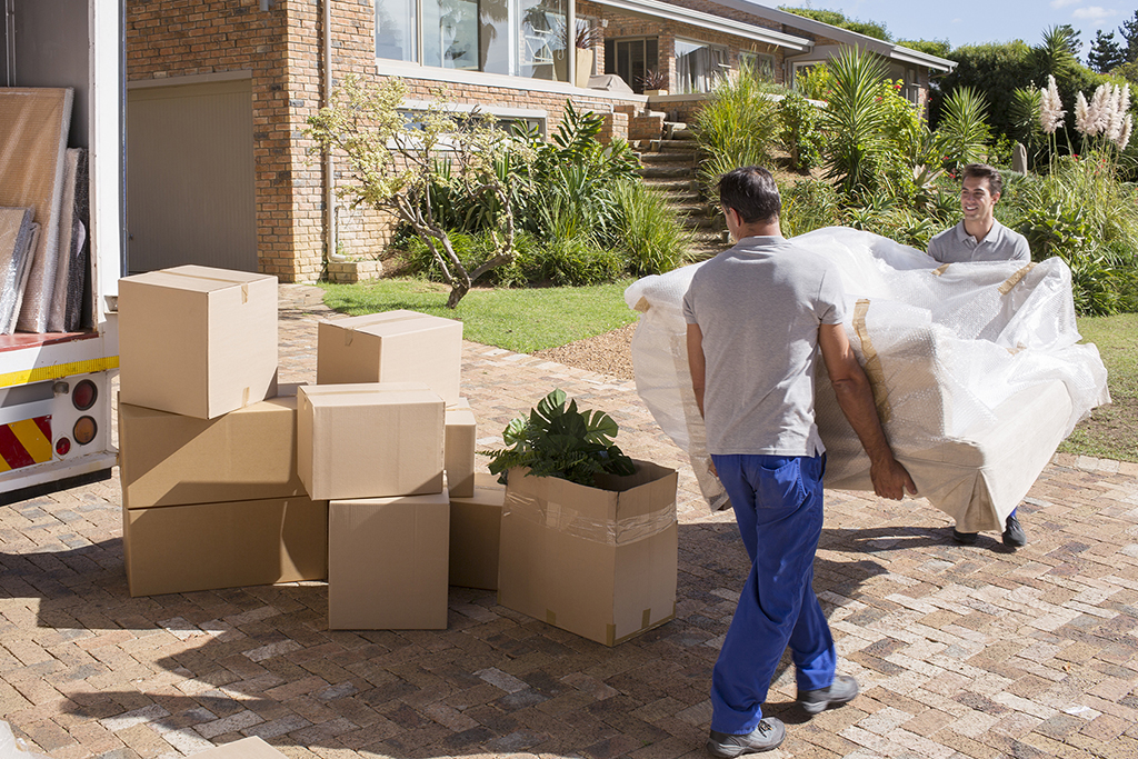 Why to hire movers